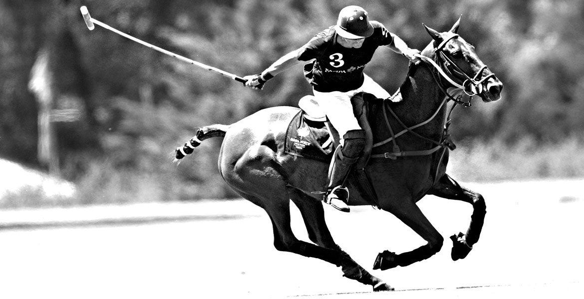 Professional polo player